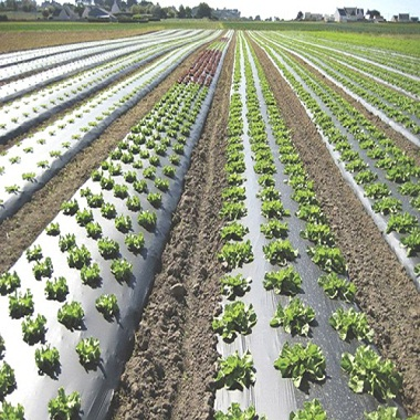 agriculture films